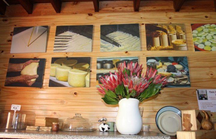 HANDMADE cheeses
