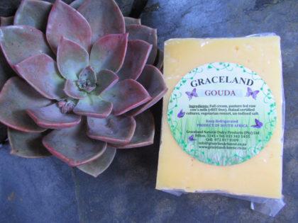 Graceland's Aged Gouda